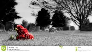 cemetery flowers cemetery flowers stock photo image of selective dead 161656