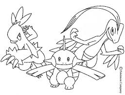 combusken and marshtomp coloring pages hellokids com