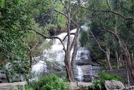 eastern and western ghats the green route yercaud a beauty of eastern ghats