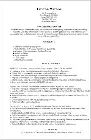 Professional Summary On Resume Examples by Professional Aml Analyst Templates To Showcase Your Talent