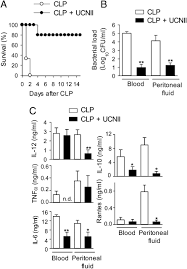 protective role of the neuropeptide urocortin ii against