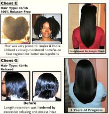 hairstyles for black women no heat video share reniece s real black hair showcase natural