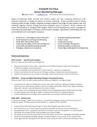 marketing manager resume federal resume writing professional resume writing services