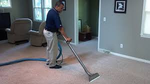 how to deep clean how to deep clean your carpet hirerush blog
