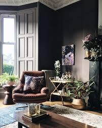 plants that grow in dark rooms how to solve interior decor dilemmas with plants dekko bird