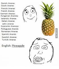 Ananas Pineapple Meme - danish an dutch ananas finnish ananas french anan german ananas