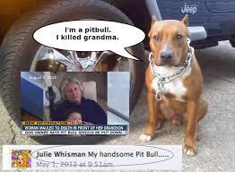 Pitbull Meme - pit bull holocaust pro bsl ban the breed stop the deed anti