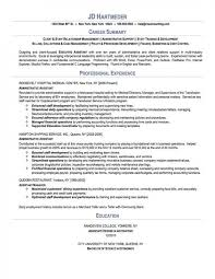 Sample Resume Summaries by Summary Resume Sample Resume Profile Summary Examples Free Resume