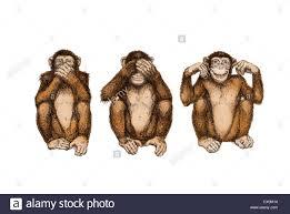 illustration drawing three wise monkeys see hear speak no