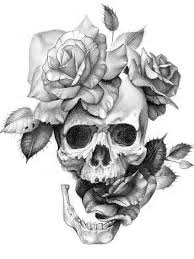 drawn rose skull inside pencil and in color drawn rose skull inside
