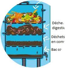 des vers dans la cuisine le lombricompostage c est composter ses déchets de cuisine en
