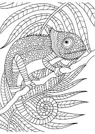 colouring in sheets colouring pages books sheets for kids