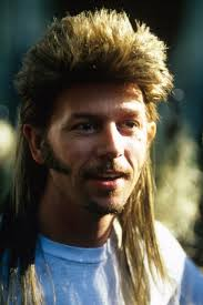 modern mullet hairstyles modern day mullet hairstyles pertaining to style trans beauty