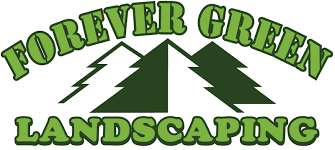 Reno Green Landscaping by Welcome To Forever Green Landscaping Forever Green Landscaping