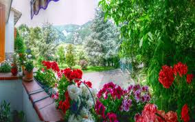 houses panorama balcony flowers hd background for hd 16 9 high