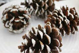 glass glitter pine cones it in the mountains
