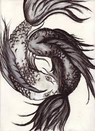 yin yang koi by casting shadows on deviantart