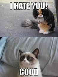 Frown Cat Meme - meme watch grumpy cat returns as a photoshop and fan art masterpiece