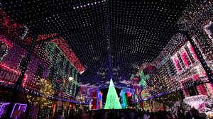 Frozen Christmas Light Show by Holidays At Disney U0027s Hollywood Studios