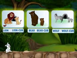 learn grade 1 english grammar animals and their young ones