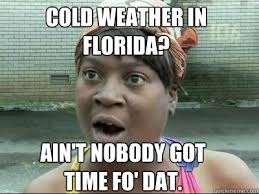 Florida State Memes - the 25 best florida memes about america s weirdest state