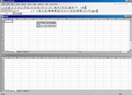 view multiple excel sheets in a workbook collect user data via