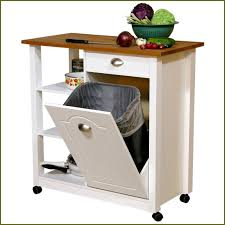 kitchen trash can cabinet impressive ideas 13 best 25 can cabinet