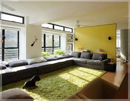 Ikea Living Room Rugs Living Room Rugs Home Design Gallery