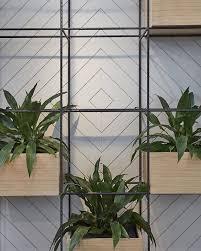 Interior Plant Wall 32 Best Interior Plants Images On Pinterest Interior Plants