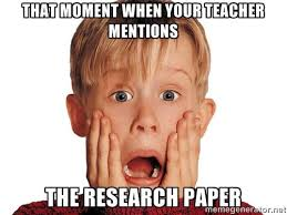 Research Meme - research paper rubric the digital classroom of mr weston