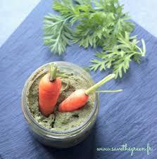 cuisiner les fanes de carottes pesto de fanes de carottes