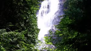 shannon falls provincial park beatiful waterfall on the sea to
