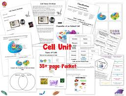 cell unit cell organelles and their function animal vs plant