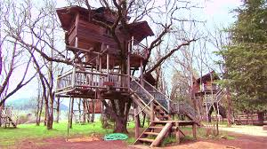 sleep in a luxury treehouse travel channel