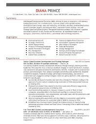 sle executive resume sle one page executive resume 28 images sles one page resume
