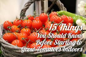 your indoor grow helpers easy guide on gardening indoor