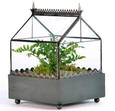 the wardian case and terrariums and how to make a terrarium garden