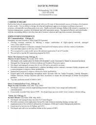 sample executive summary for resume resume free executive