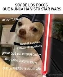 Memes De Chihuahua - memes perro chihuahua enojado google search huh pinterest