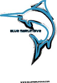 blue marlin dive trawangan designs clothing factory in