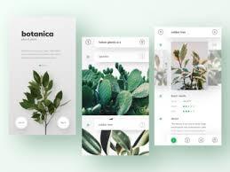 plant database app karina tarhoni dribbble
