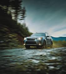 subaru forester xt off road photos 2016 forester subaru canada