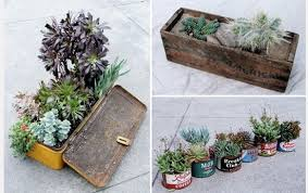 Indoor Gardening Ideas 5 More Ideas For Your Indoor Garden Planetsave
