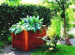 Container Vegetable Gardening Ideas Awesome Veggie Garden Ideas Easy Container Vegetable Gardening