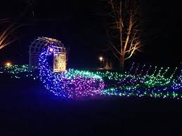 peacock of lights at ginter gardens light festival picture of