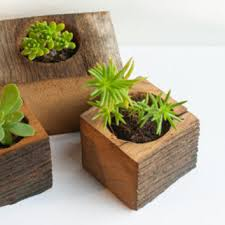 small planter succulent planter planter box small from luzdelbosque on etsy
