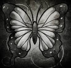 how to draw a black butterfly by bugs animals free