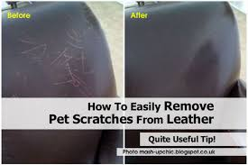 How To Fix Scratches On Leather Sofa Repair Brown Leather Sofa Scratches Thecreativescientist
