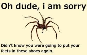 Afraid Of Spiders Meme - spider meme spider quotes spider meme and meme