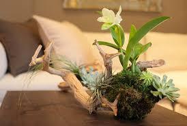 coffee table floral arrangements floral arrangement coffee table orly khon floral